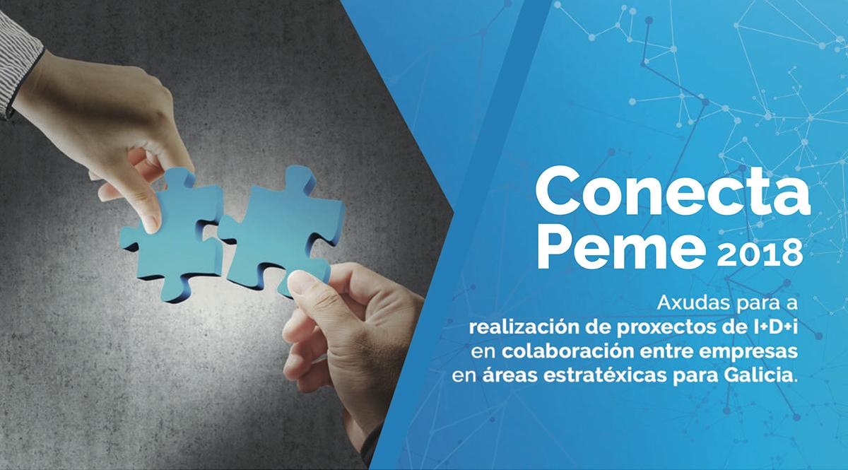 Imagen Conecta Peme 2018